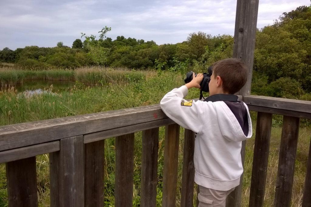 Fare birdwatching con i bambini a Portonovo