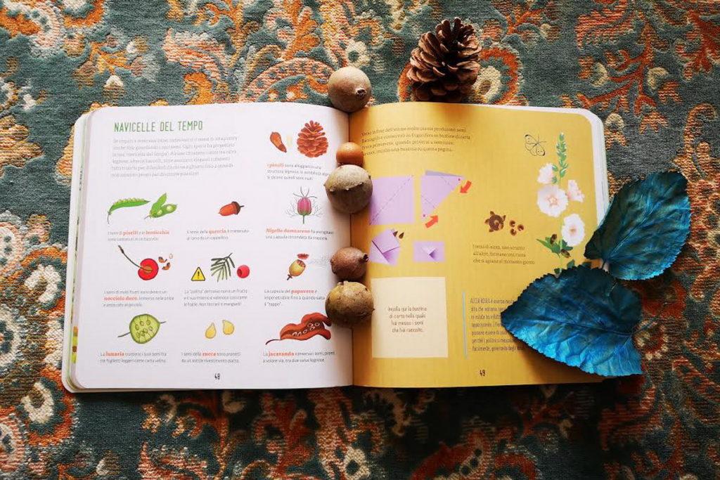 come coltivare fagioli con i bambini