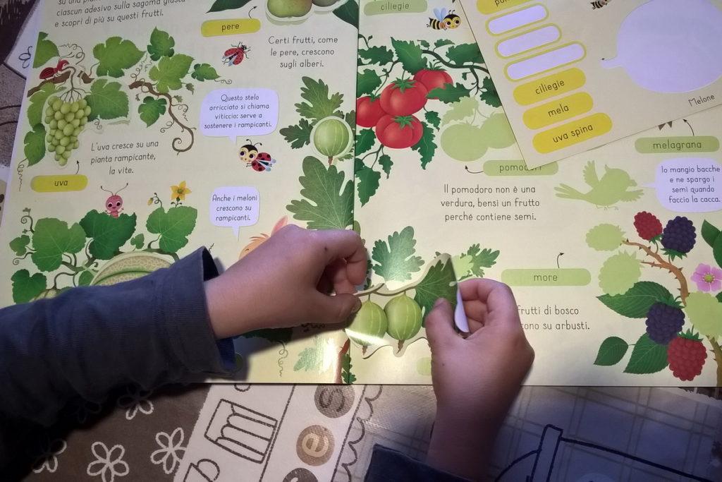 Libri adesivi per bambini sui semi e sulla frutta