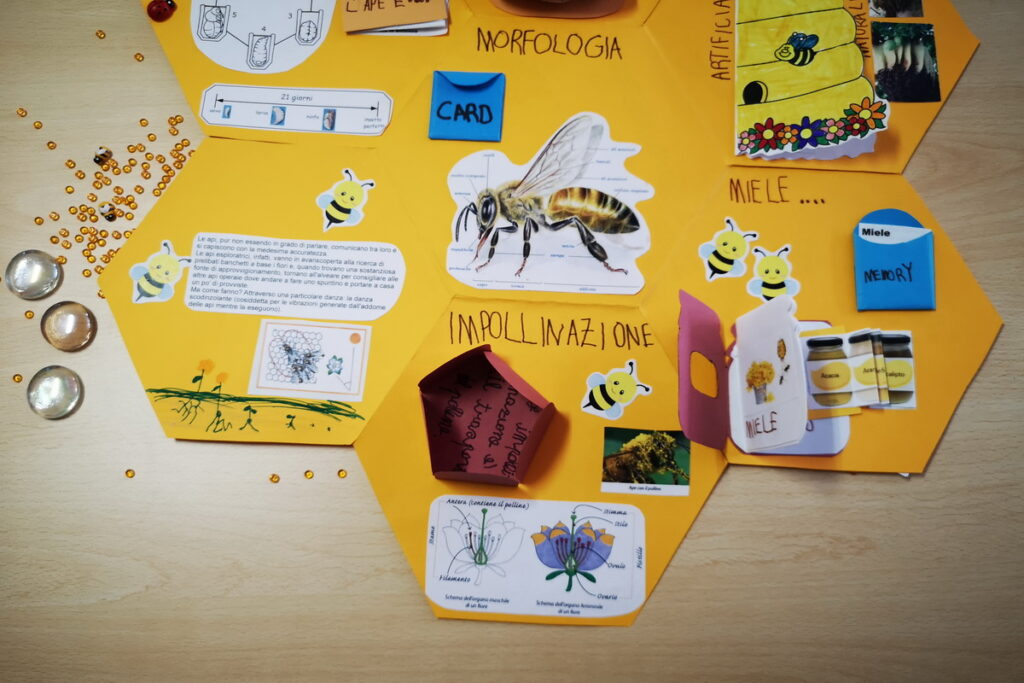 Schede didattiche sulle api