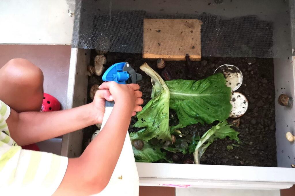 Bambini che vogliono allevare lumache come fare