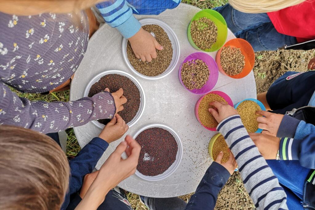 visita didattica a un allevamento di lumache a Riccione