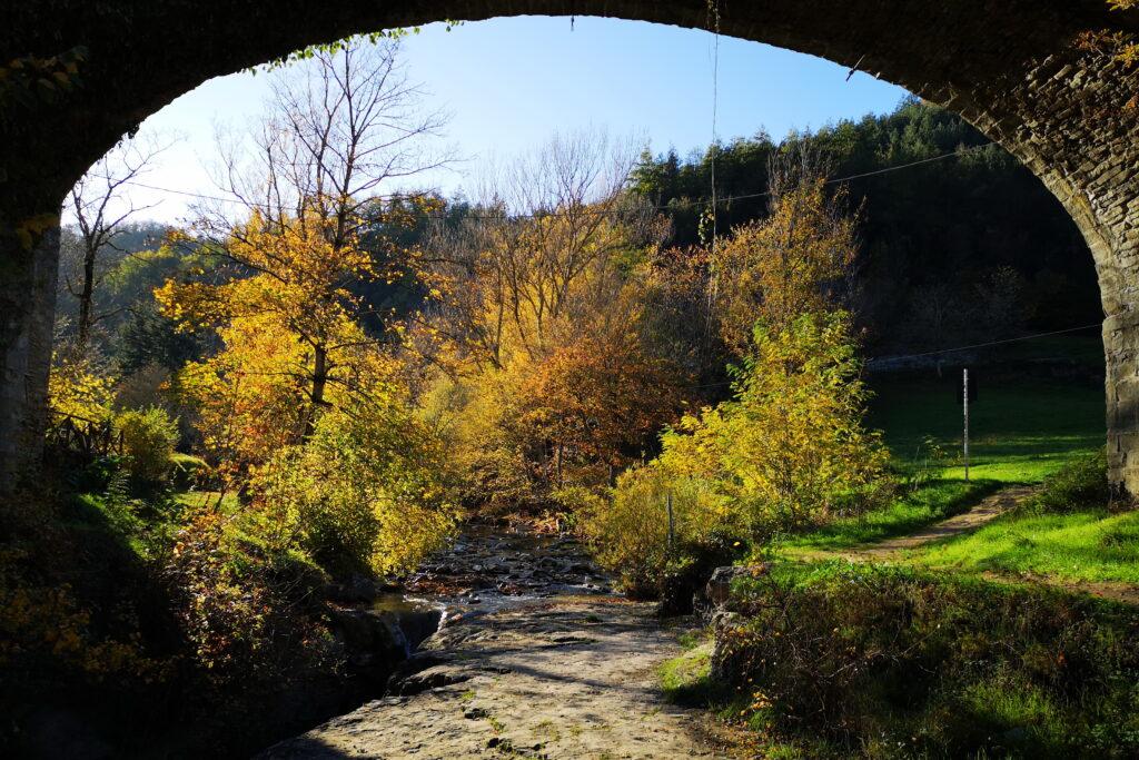 Visitare la grotta urlante a Premilcuore