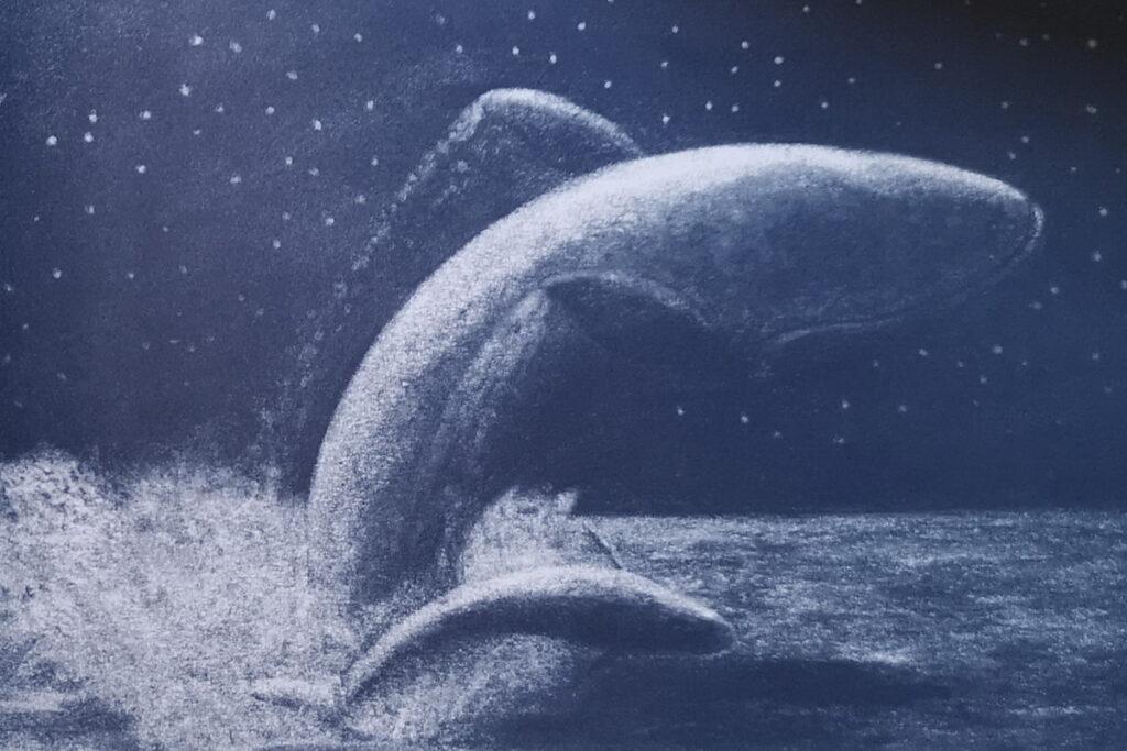 bambini curiosi sulle balene