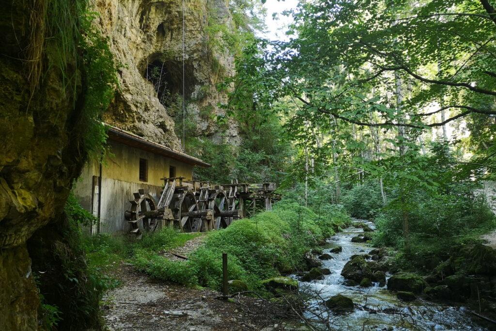 la passeggiata del Burrone in val di non Il canyon del Rio Sass