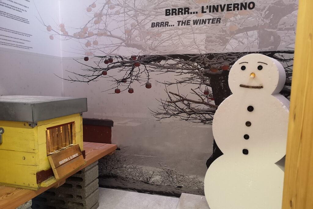 apicoltori per bambini in Trentino