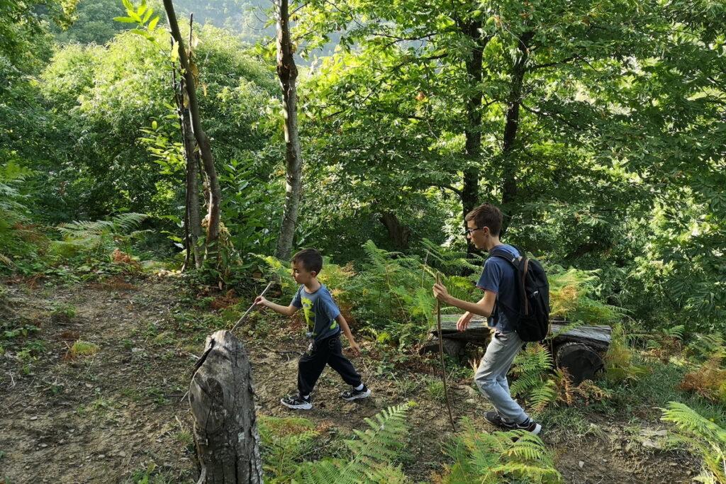 dove raccogliere castagne Marradi con i bambini